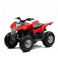 ADLY 100cc Quad ATV (Kids)