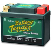 Deltran Battery Tender Lithium Battery 9A