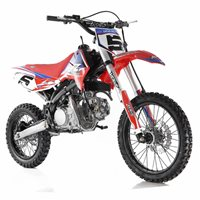 RFZ Racing  150cc Pitbike Big Wheel (Red)